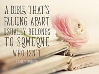Bible Quote Fine-Art Print