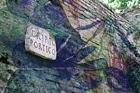 Cripto Fine-Art Print