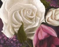 Among the White Roses Fine-Art Print