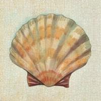 Coastal Treasures I Fine-Art Print