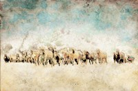 Roaming Horses Fine-Art Print