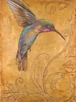 Golden Hummingbird I Framed Print