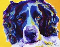 English Springer Spaniel Emma Fine-Art Print