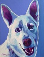 Husky - Joaquin Fine-Art Print