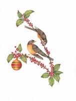 Robin Holly Day Fine-Art Print