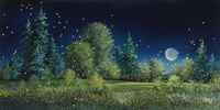 Fireflies Fine-Art Print