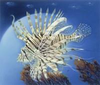 Lion Fish Fine-Art Print