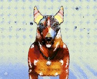 Bull Terrier Brown Oxide LX Fine-Art Print