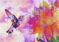 Hummingbird XVII Fine-Art Print