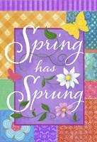 Spring Flag Fine-Art Print