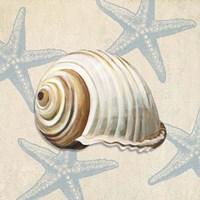 Ocean Gift III Framed Print
