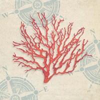 Ocean Gift IV Fine-Art Print