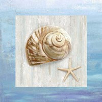 From the Sea IV Fine-Art Print