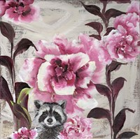 Hiding Racoon Fine-Art Print