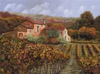 Tra Le Vigne a Montalcino Fine-Art Print