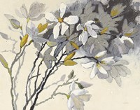 Magnolias Yellow Gray Fine-Art Print