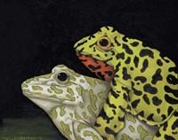 Horny Toads 3 Fine-Art Print