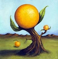 Orange Fruit Tree Fine-Art Print