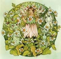 Daisy Chain Fine-Art Print