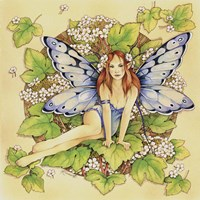 Guelder Rose Fine-Art Print