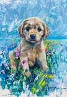Cocker Spaniel Puppy Love Fine-Art Print
