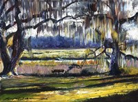Lowcountry Spanish Moss Escape Fine-Art Print
