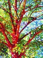 Summer Medley Fine-Art Print