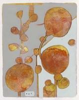 Orange Seed Pods 3 Fine-Art Print