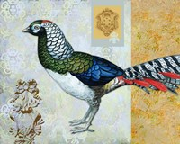 Diamond Pheasant Fine-Art Print