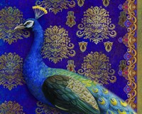 Indian Peacock Fine-Art Print