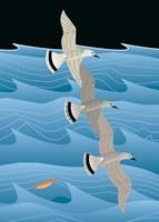 Gulls Fine-Art Print