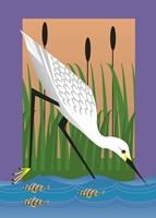 In The Marsh Fine-Art Print