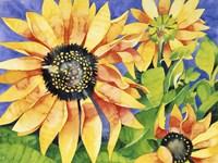 Magic Sunflowers Fine-Art Print