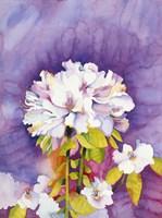 Moonflower Fine-Art Print
