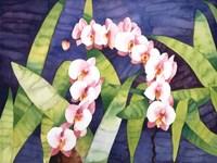Sacred Orchids Fine-Art Print