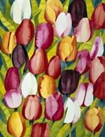 Colorful Tulips Fine-Art Print
