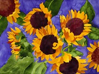 New Mexico Sunflowers Fine-Art Print
