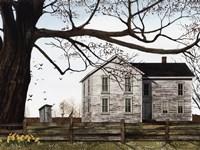 Spring Morning House Fine-Art Print