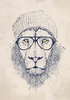 Cool Lion Fine-Art Print