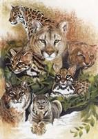 Feline Rhapsody Fine-Art Print