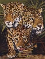Forest Jewels Fine-Art Print