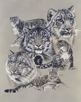 Uncommon Fine-Art Print