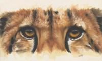 Eye- Catching Cheetah Fine-Art Print