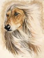Afgan Hound Fine-Art Print