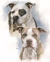 Sparkle and Buster Fine-Art Print
