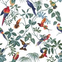 Aviary Multi Original Fine-Art Print