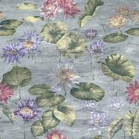 Lily Pond Dove Grey Fine-Art Print