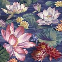 Lily Pool Fine-Art Print
