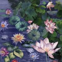 Water Blossoms Fine-Art Print