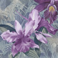 Windsong Orchid Blooms Fine-Art Print